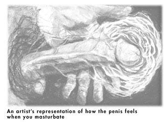 Porn Hub Sex Vids